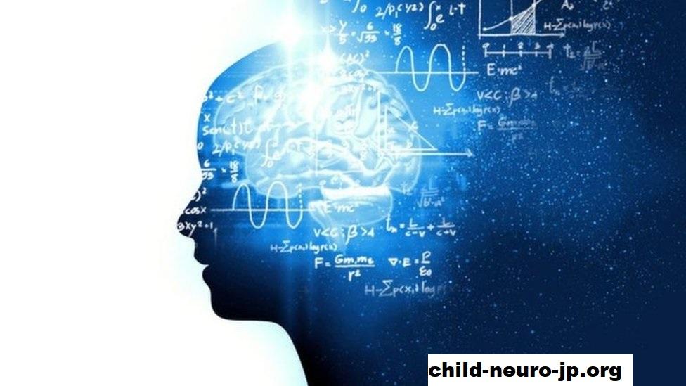 13 Fakta Menarik Tentang Otak Dari Ahli Saraf Terkemuka